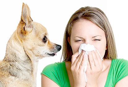 Nucleus Inc - List of Allergy